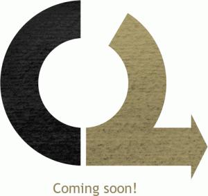 OpenLeaks coming soon!